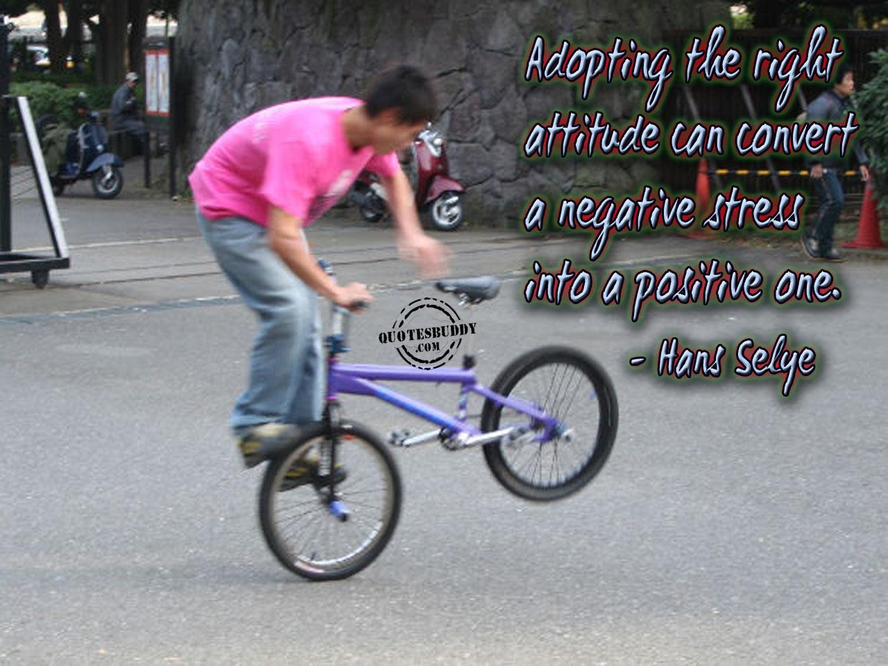 Adopt quote #3