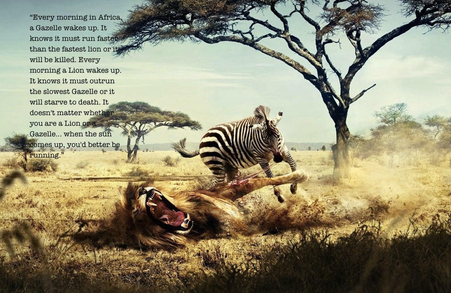 Africa quote #4