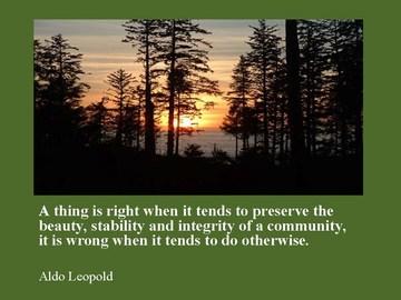 Aldo Leopold's quote #1