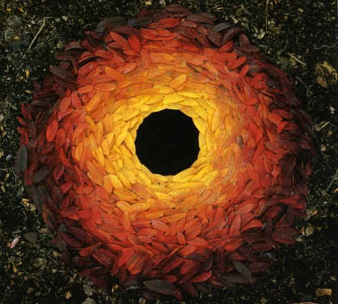 Andy Goldsworthy's quote #4