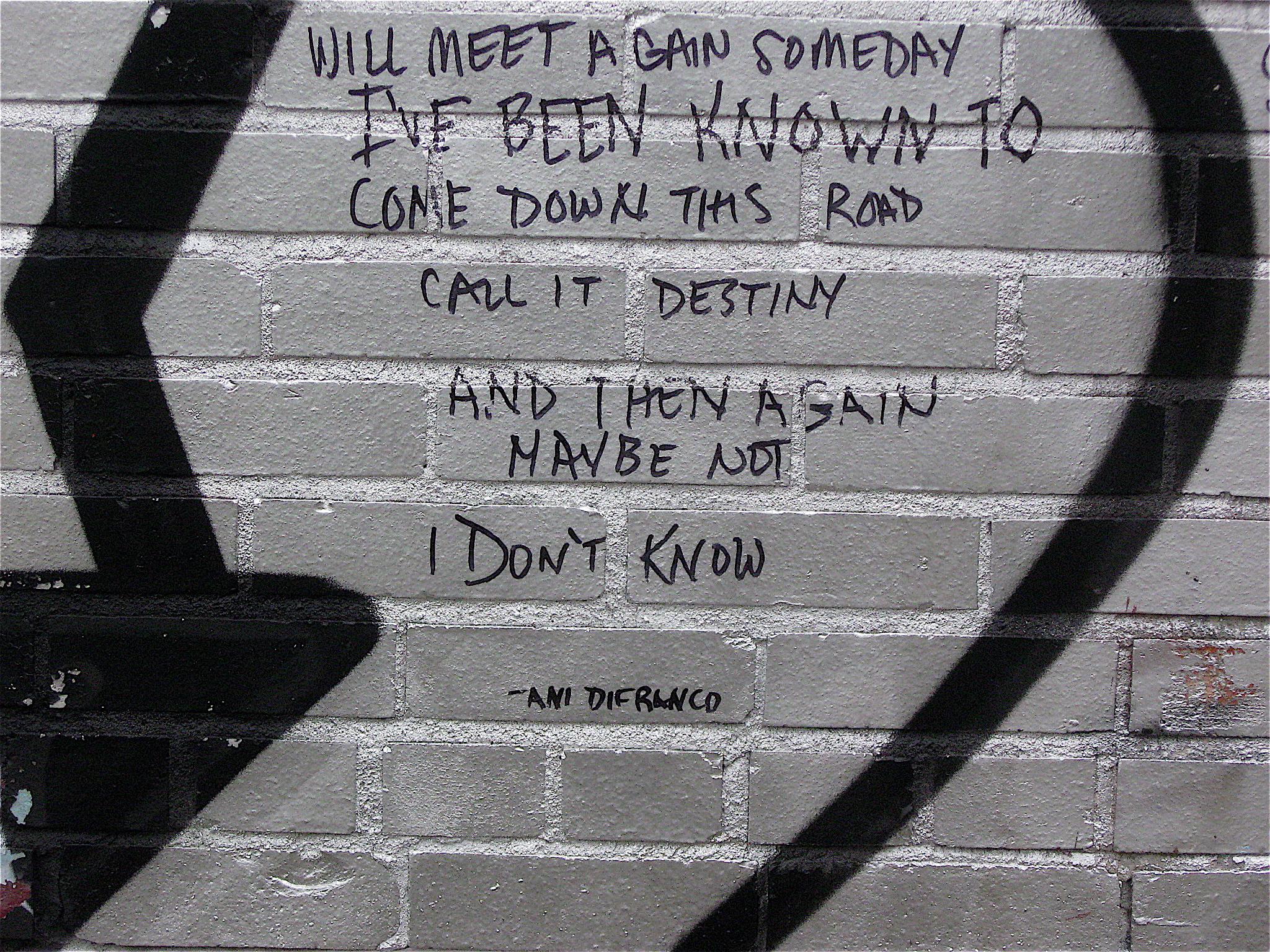 Ani DiFranco's quote #2