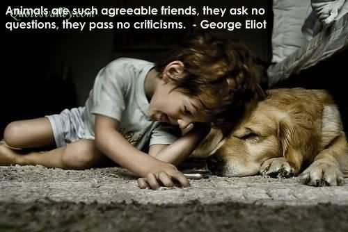 Animal quote #8