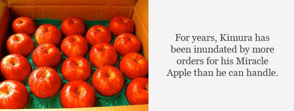 Apple quote #2