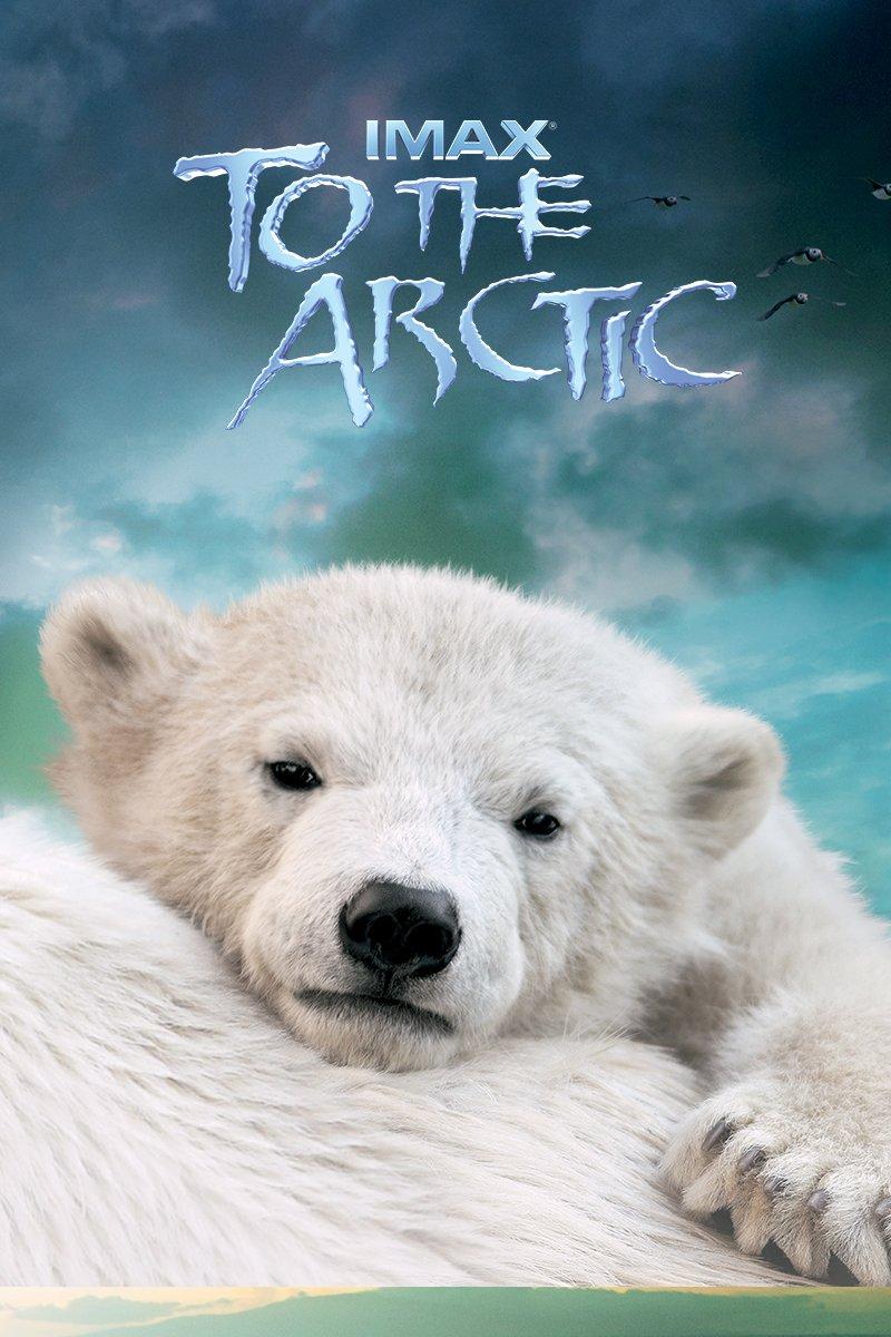 Arctic quote #1