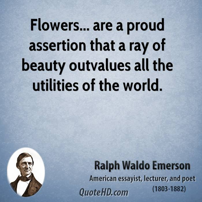 Assertion quote #1