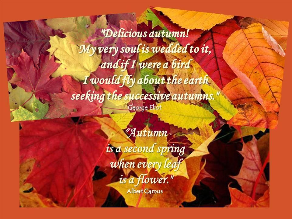 Autumn quote #2