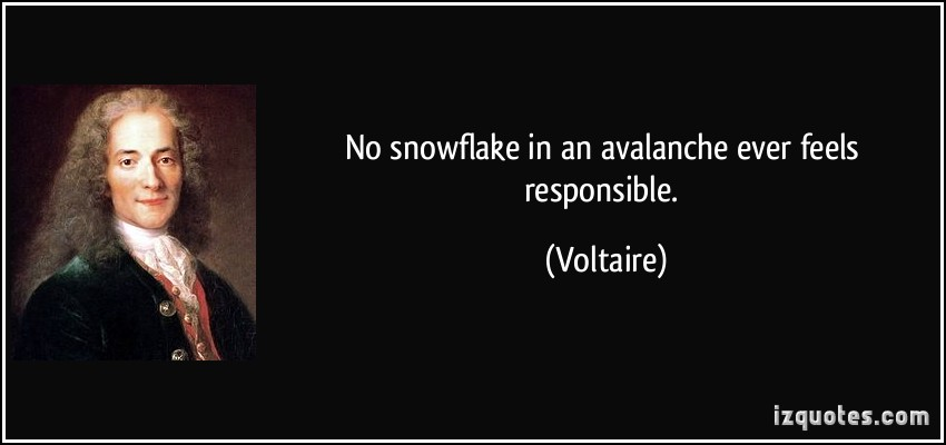 Avalanche quote #1
