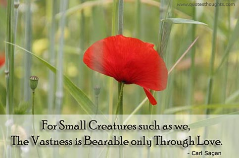Bearable quote #1