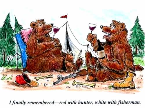 Bears quote #3