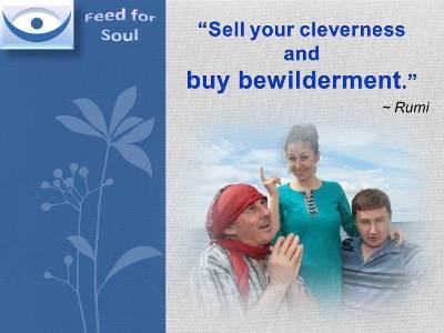 Bewilderment quote #2