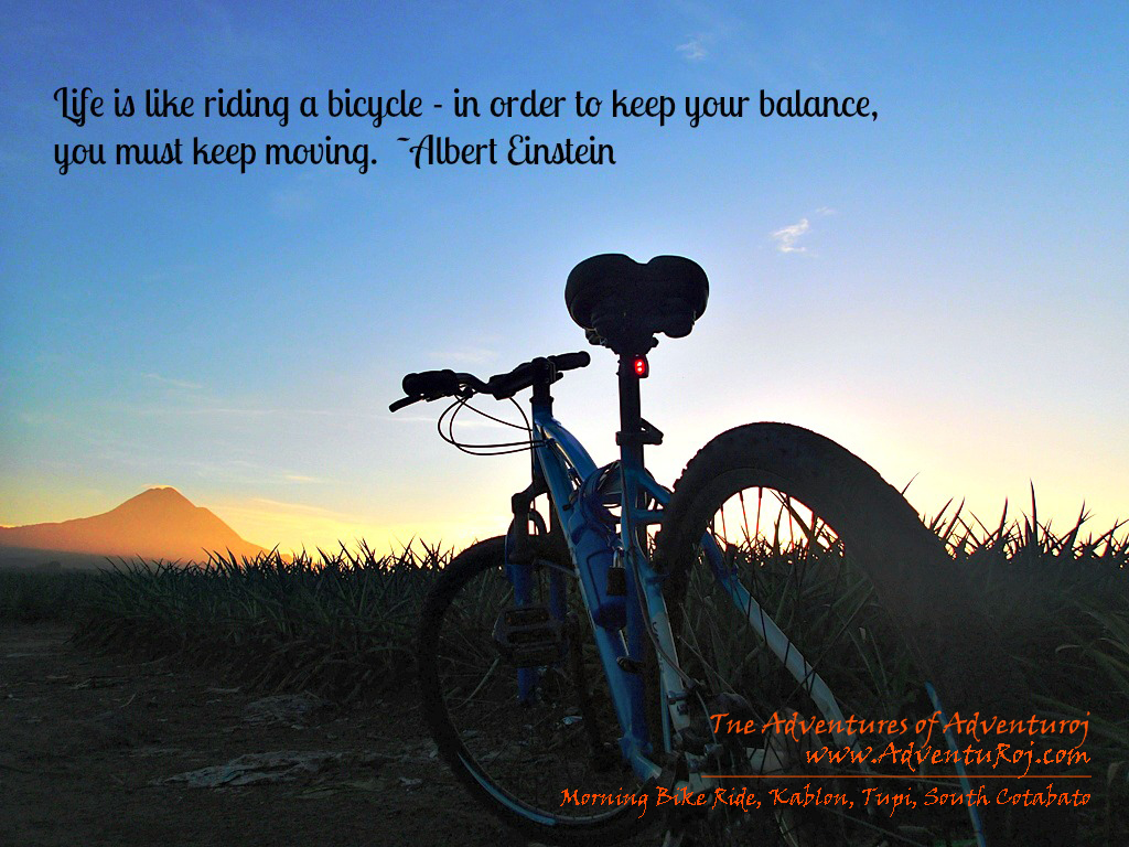 Bike quote #8