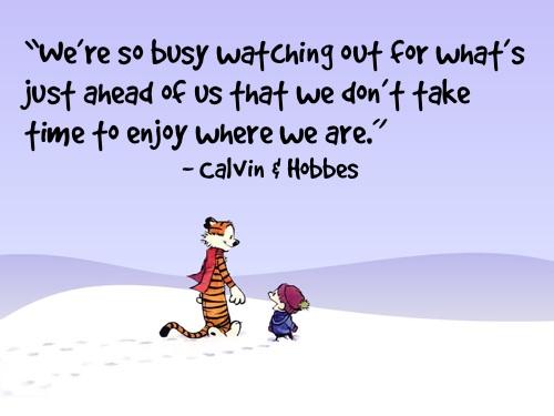 Bill Watterson's quote #4