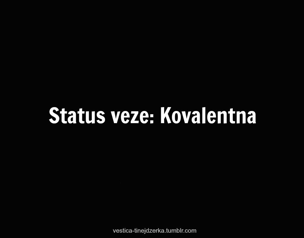 Bosnian quote #2