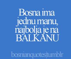 Bosnian quote #1