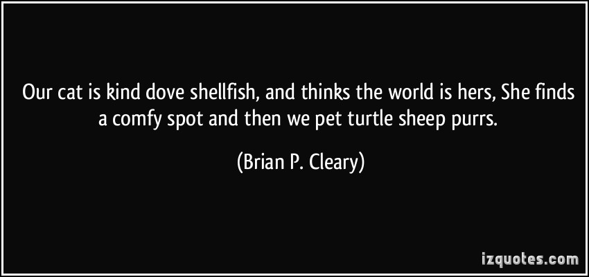 Brian P. Cleary's quote #4