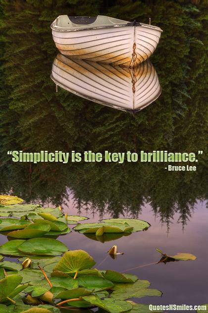 Brilliance quote #1