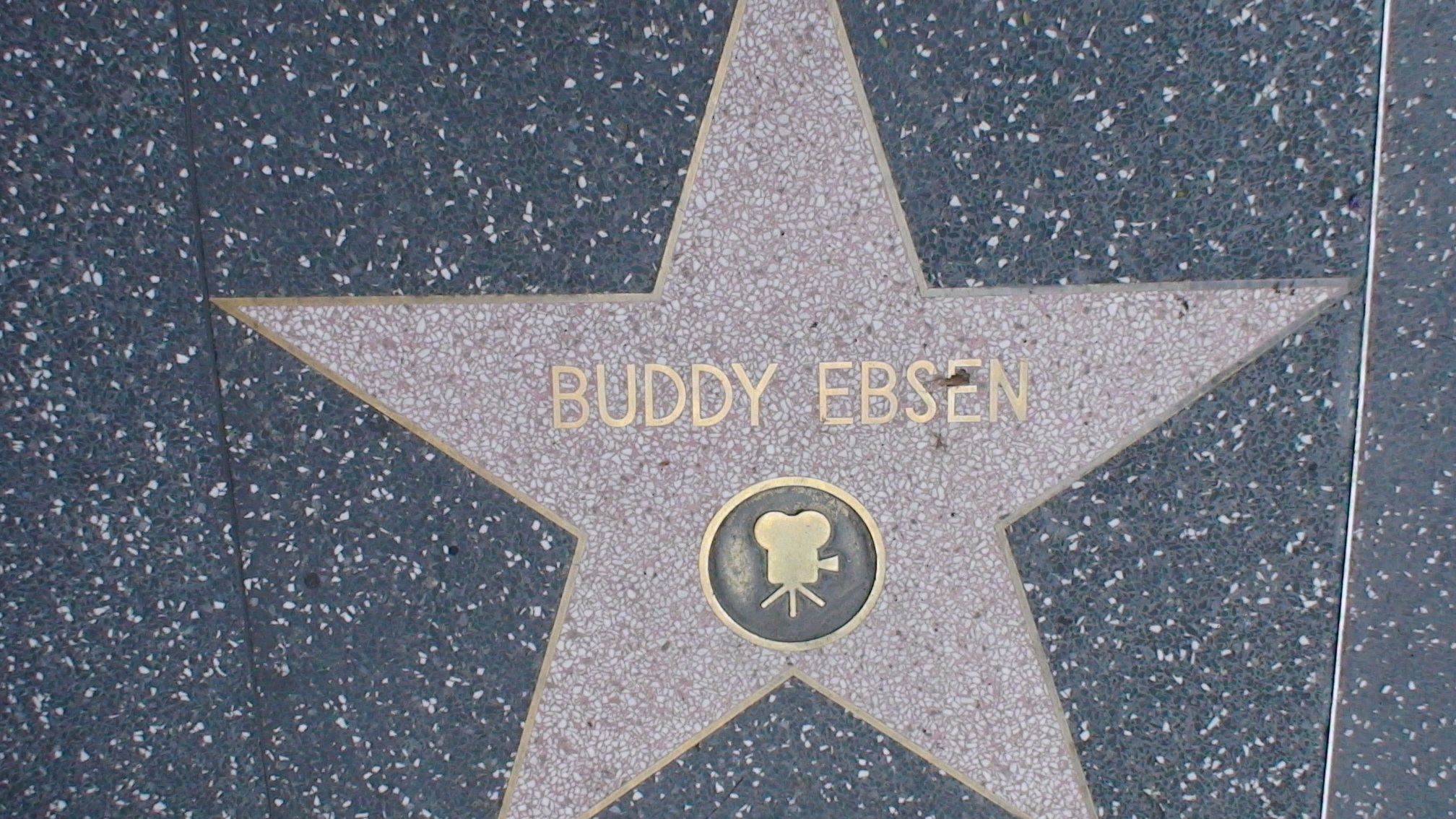 Buddy Ebsen's quote