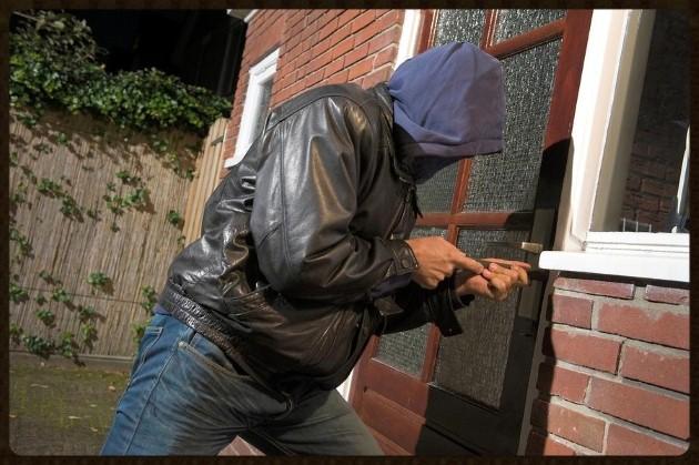 Burglars quote #1