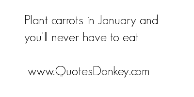 Carrot quote #1