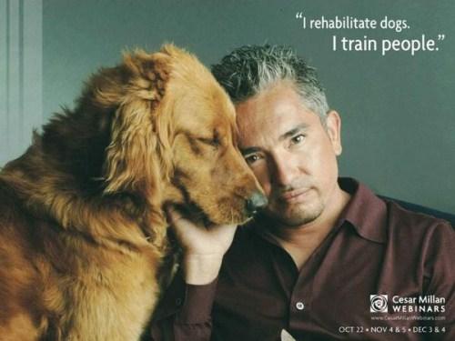 Cesar Millan's quote #7