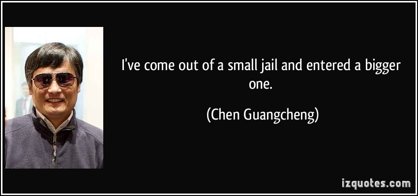 Chen Guangcheng's quote #6