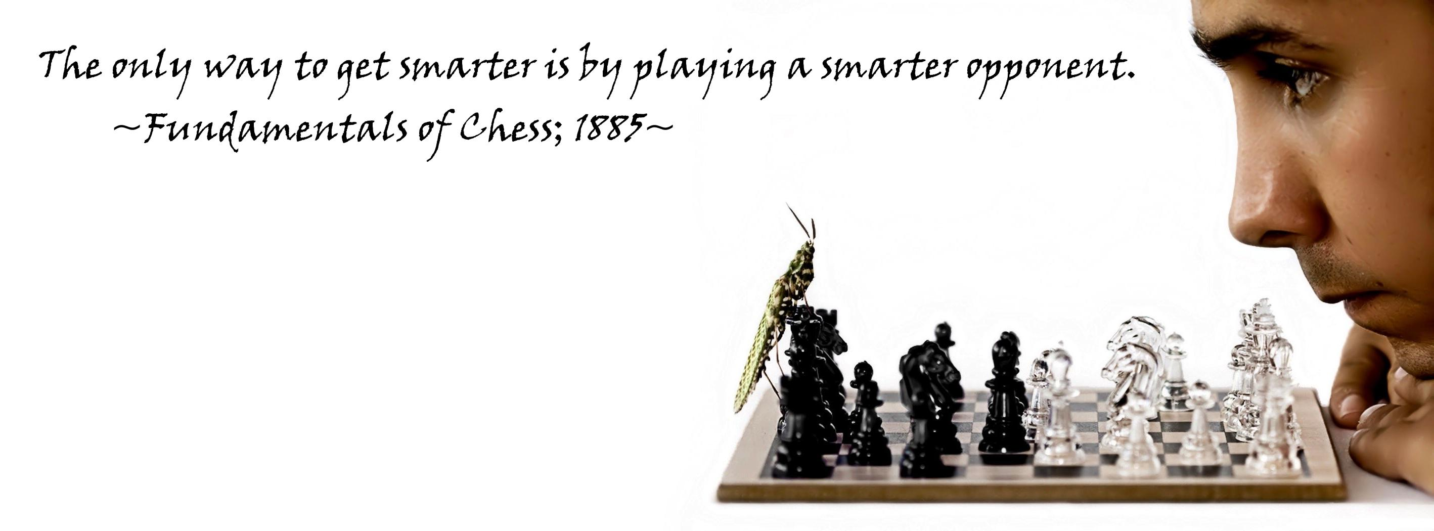 Chess quote #6