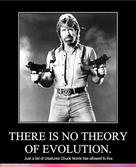 Chuck Norris's quote #6