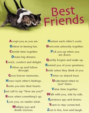 Closest Friends quote
