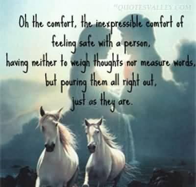Comfort quote #4