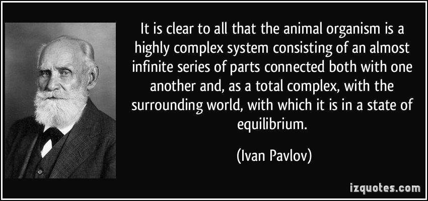 Complex System quote #1