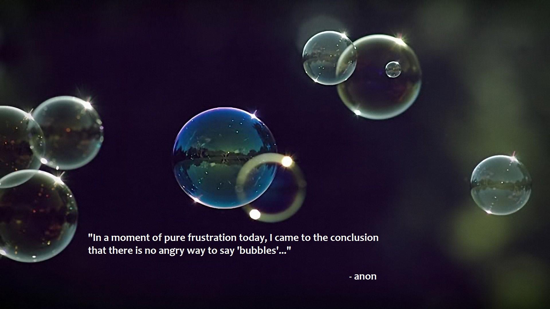Conclusion quote #2