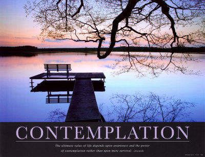 Contemplating Life Quotes Fascinating Famous Quotes About 'contemplate'  Sualci Quotes
