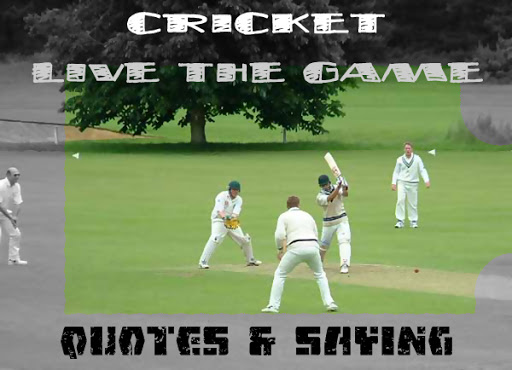 Cricket quote #5