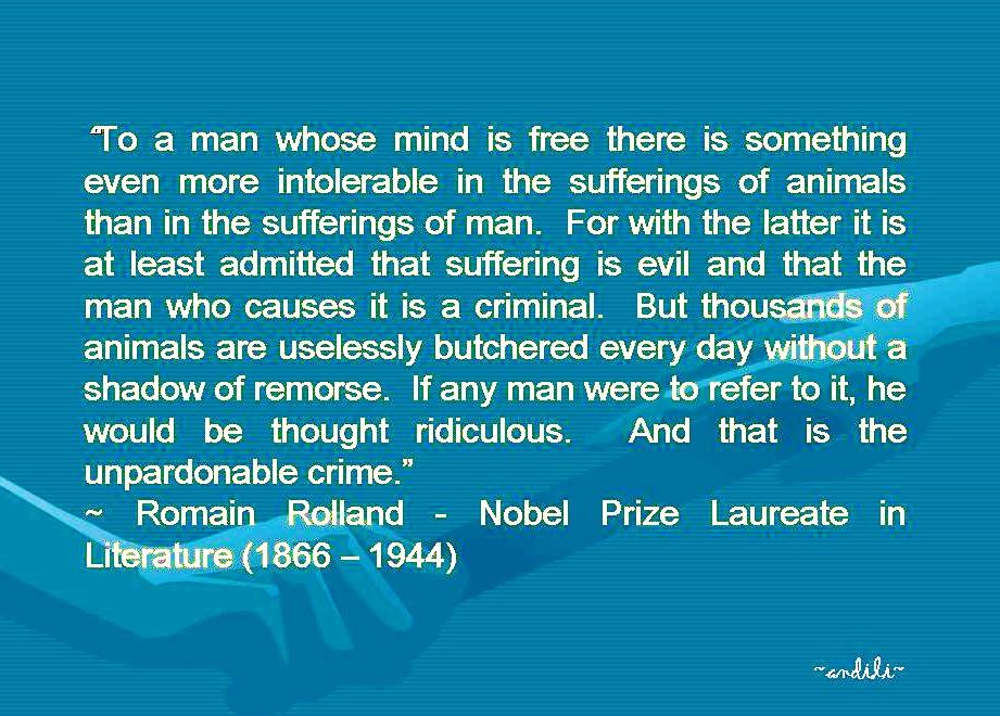 Cruelty quote #7