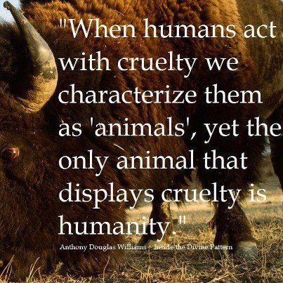 Cruelty quote #5
