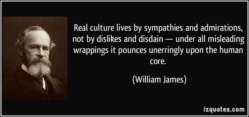 Culture quote #6