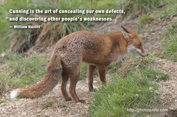 Cunning quote #2