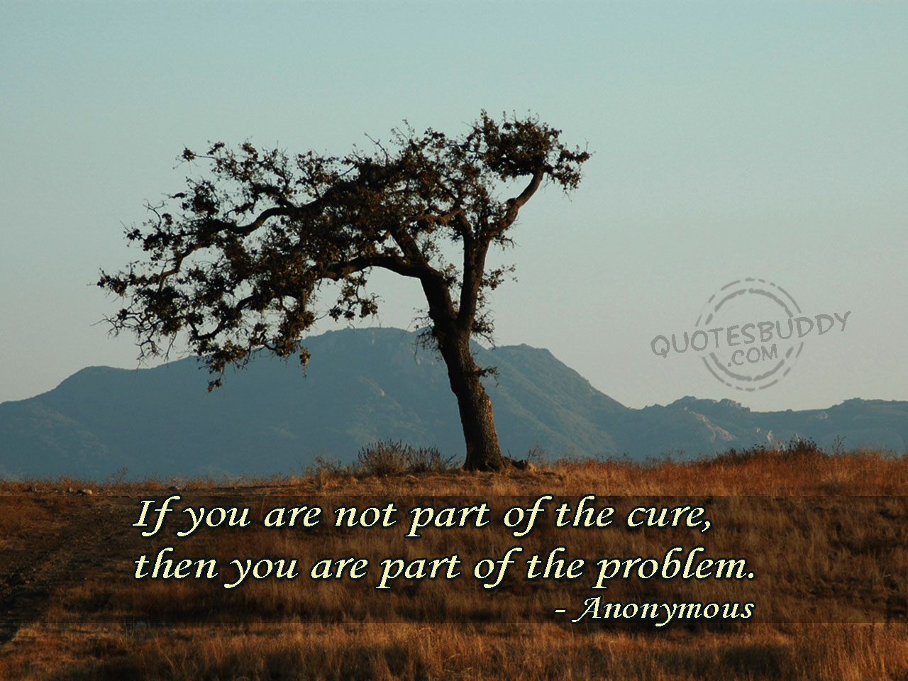 Cure quote #3