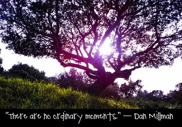 Dan Millman's quote #6