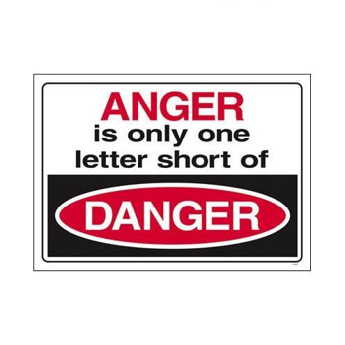 Danger quote #4