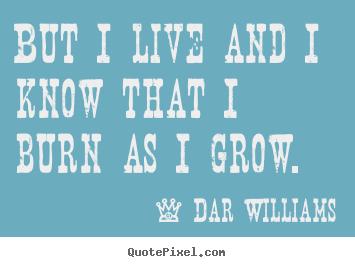 Dar Williams's quote #7