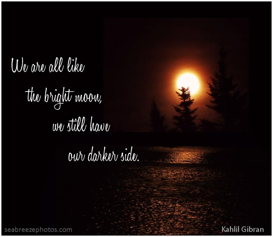 Dark Side quote #1