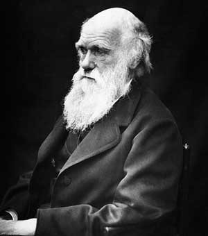 Darwinian quote #1