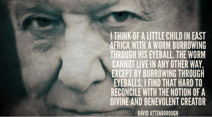 David Attenborough's quote #1