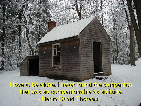 David quote #7