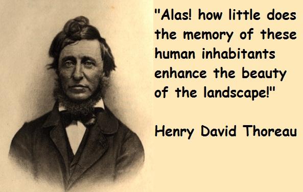 David quote #8