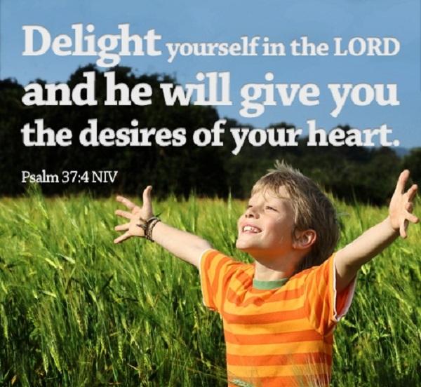 Delight quote #6