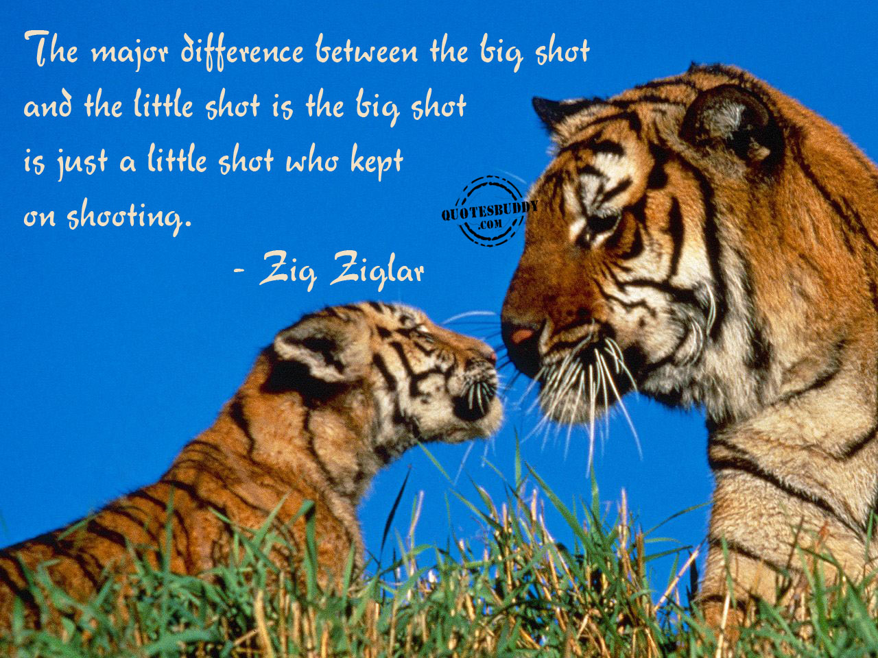 Difference quote #2