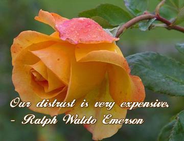 Distrust quote #2
