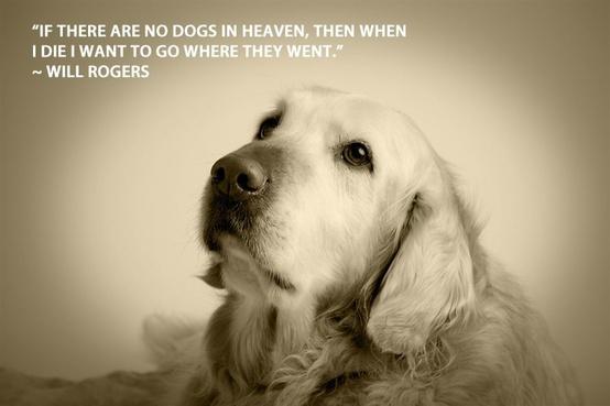 Dog quote #2